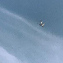 空/飛行機 画質は保存したら戻ります いいね押してネの画像(アイコン おしゃれに関連した画像)
