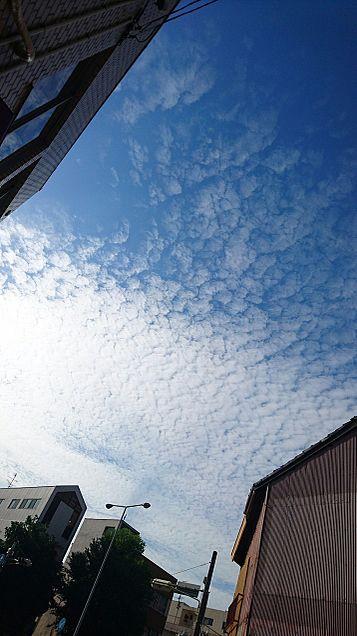 空の写真wの画像(プリ画像)