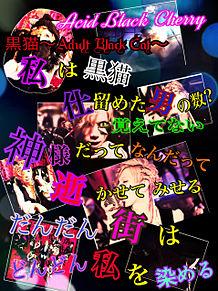 黒猫〜Adult Black Cat〜の画像(プリ画像)