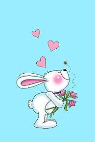 ウサギの画像(bunnyに関連した画像)