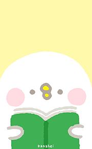 かなへい( •8• )の画像(かなへい 壁紙に関連した画像)