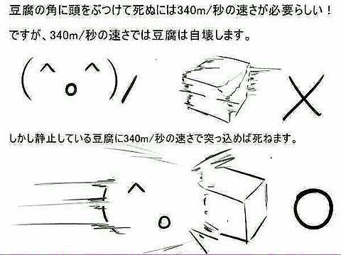 お勉強@豆腐の画像(プリ画像)