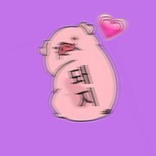 pig💞の画像(pigに関連した画像)