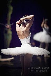 Balletの画像(トプ画 バレエに関連した画像)