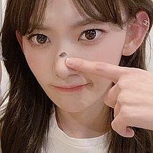 ㅤㅤㅤㅤㅤㅤㅤㅤㅤㅤㅤㅤの画像(HKT48に関連した画像)