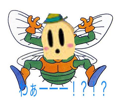 ハエの画像(プリ画像)