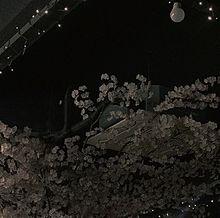 ︎︎の画像(夜景  壁紙に関連した画像)