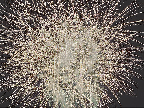 花火の画像(プリ画像)