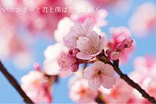 恋色に咲けの画像(恋色に咲けに関連した画像)