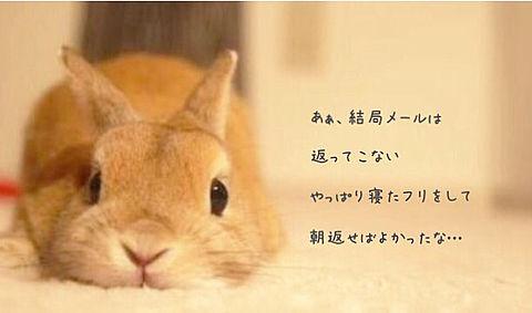 back number/はじまりはじまりの画像(プリ画像)