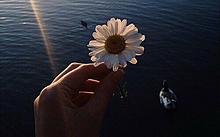 気にったらいいね♡♡♡の画像(海外 summerに関連した画像)