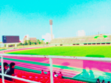 陸上競技場🏟 女子の画像(陸上競技場に関連した画像)