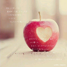 LOVE / MACOの画像(MACOに関連した画像)