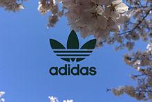 青空と桜の画像(青に関連した画像)