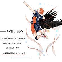 ハイキュー / 日向翔陽の画像(少年漫画¦少年ジャンプに関連した画像)
