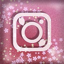 Instagramの画像(ラムに関連した画像)