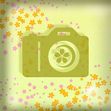 cameraの画像(CAMERAに関連した画像)