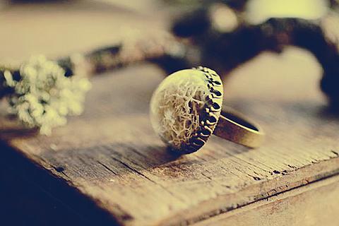 指輪の画像(プリ画像)