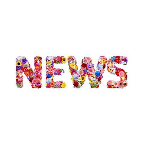 NEWS ロゴの画像(プリ画像)
