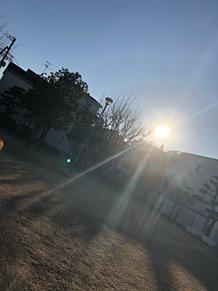 綺麗な光の画像(綺麗なに関連した画像)