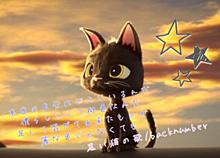 backnumber 黒い猫の歌の画像(黒い猫の歌に関連した画像)