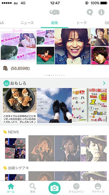 亀〜の画像(プリ画像)