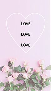 ローズピンクの画像(ローズピンクに関連した画像)
