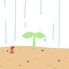葉っぱ イラストの画像30点完全無料画像検索のプリ画像bygmo