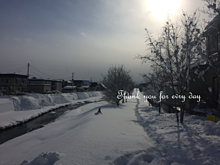 冬 プリ画像