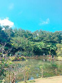 沖縄 旅👌の画像(南国に関連した画像)