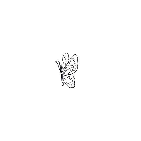butterflyの画像(プリ画像)