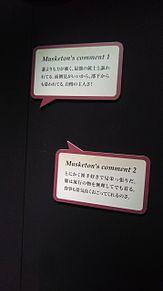 うたプリ SMS企画展 シャイマスの画像(企画展に関連した画像)