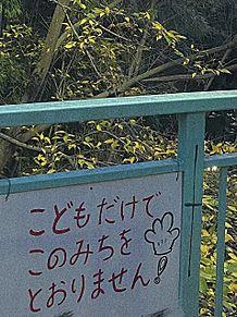 怖いよ〜〜〜の画像(怖いに関連した画像)