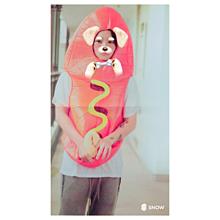 ワタナベマホトの画像(プリ画像)