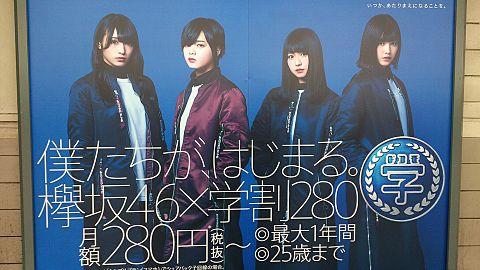 欅坂46♡の画像(プリ画像)