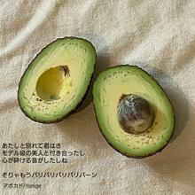 アボカド/Yonige/保存は❤の画像(三角関係に関連した画像)