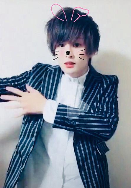 Non Stop Rabbit たいたい