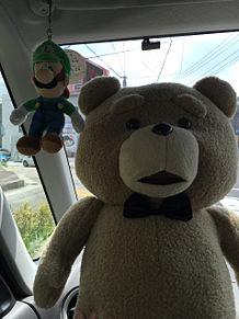 TEDとルイージの画像(プリ画像)