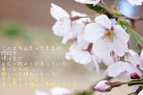 新しい季節の画像(プリ画像)