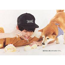 大ちゃん&柴犬の画像(プリ画像)
