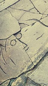 BEATLESペニーレインの画像(beatlesに関連した画像)