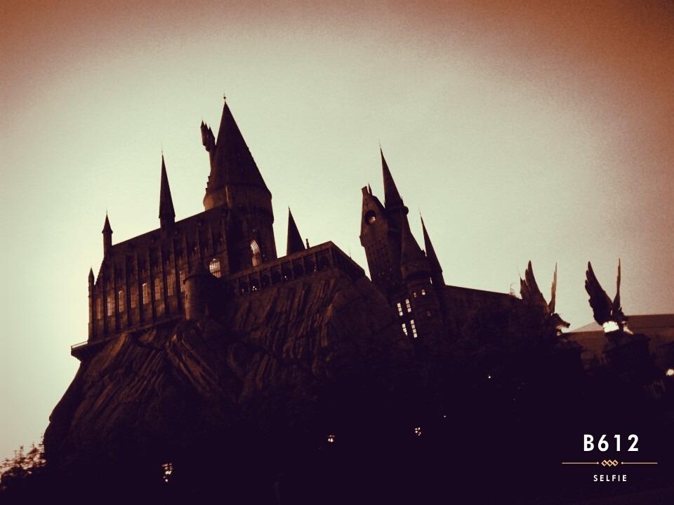 ホグワーツ魔法魔術学校の画像 p1_6