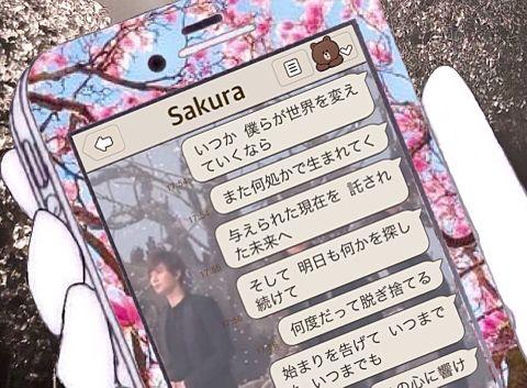 Sakura@スマホの画像(プリ画像)