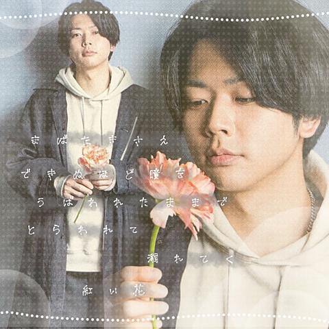 増田貴久|紅い花の画像(プリ画像)