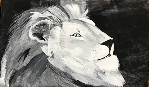 ライオンの画像 プリ画像