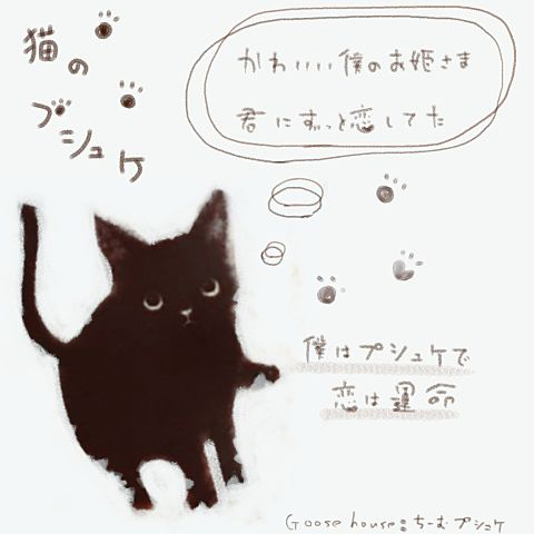 猫のプシュケの画像(プリ画像)