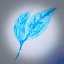羽葉(はは)の画像(植物に関連した画像)