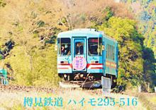 樽見鉄道 2019年 桜ダイヤの画像(2019年に関連した画像)