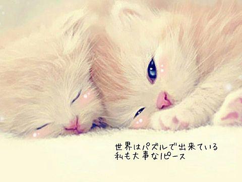 英玲奈の画像 p1_29