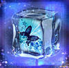 蝶々 プリ画像